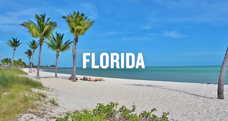 Retire in Florida