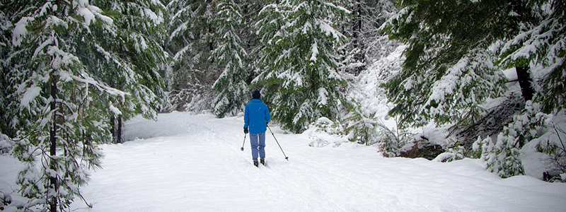 Cross Country Skiing Fraser Valley