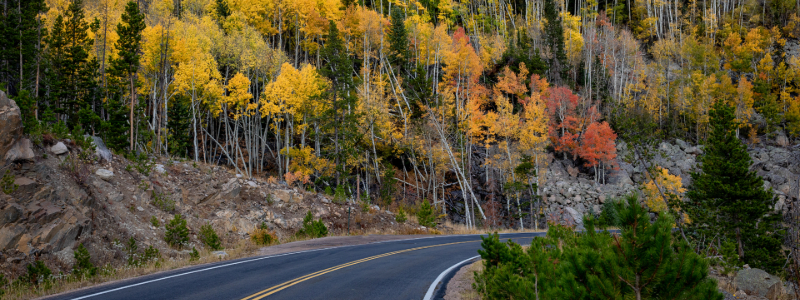 fall foliage in winter park colorado
