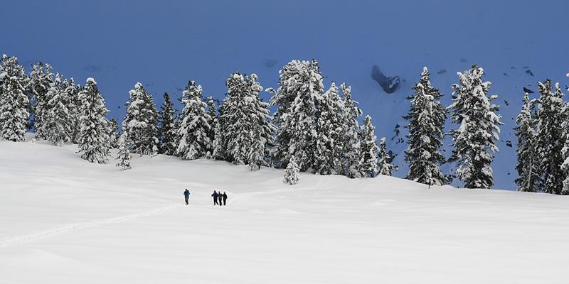 Snowshoe Winter Park