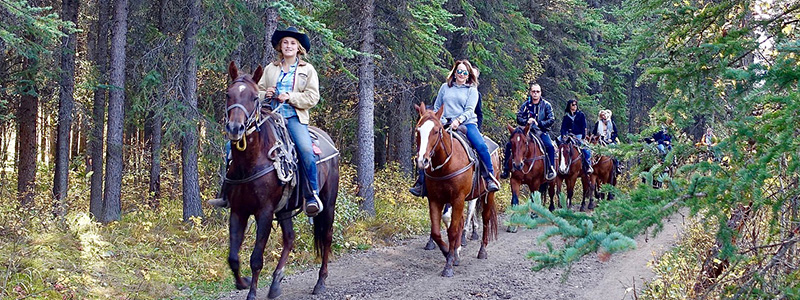 Winter Park Horseback Riding