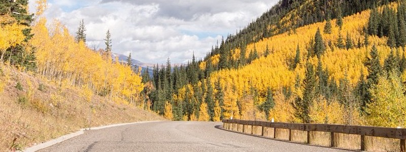 best fall drives and aspen trees
